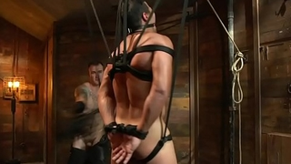 Suspended sub gets flogged by dominant hunk